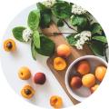 Aromathérapie & Alimentation
