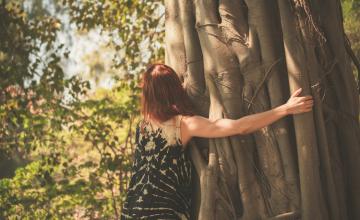 Les arbres : ces médecins silencieux