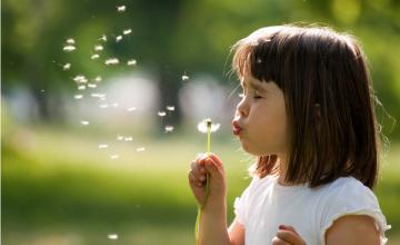 Dites adieu à vos allergies avec Bye-Bye Allergies®