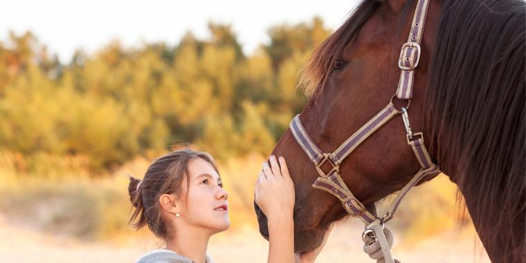 Equithérapie : le cheval guérisseur