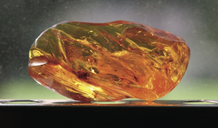 Lithothérapie, réguler l'énergie avec des pierres