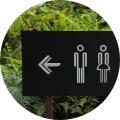 Phytothérapie & Troubles urinaires