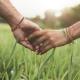Thérapie de couple : la faire, et pourquoi pas s'y former ?