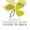 Caroline Pico