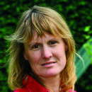 Anne Mottet