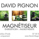 David Pignon