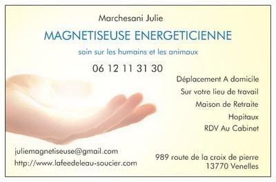 JULIE MARCHESANI MagnetismeGuerisseurRadiesthesieEquilibre Energetique