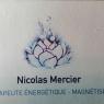 Nicolas Mercier