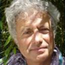 Laurent Baladi